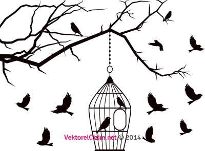 Kuşlar, Kuş Kafesi, Ağaç